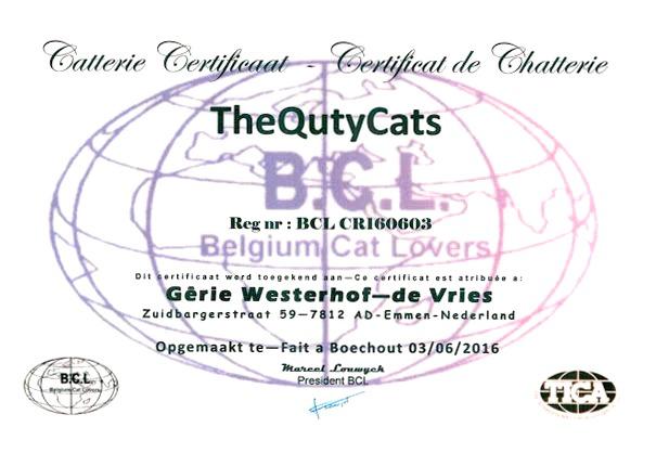 certificaat 1