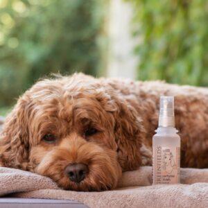 Greenfields Hondenparfum Blush 75 ml