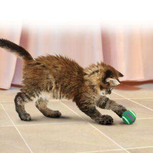 KONG Cat Tennisballs With Bells
