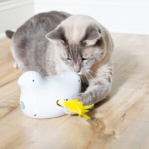 Petsafe Peek-a-bird - Elektronisch kattenspeeltje