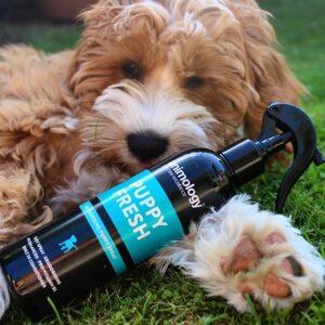 Animology Puppy Fresh Refreshing Spray 4x250ml