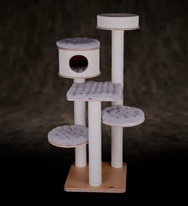cat tree for cats ex 6