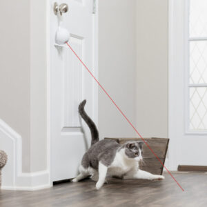 Frolicat Dancing Dot Laser Cat Toy