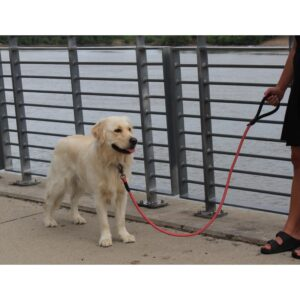 KONG Rope Leash