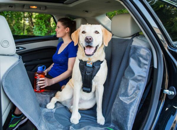 Kurgo - Enhanced Strength Tru-Fit Dog Car Harness