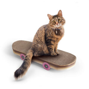 Suck UK Krabbord Skateboard Katten