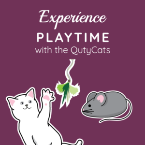 Playtime with The QutyCats